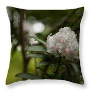 Morning Grace Throw Pillow