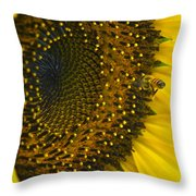 Morning Is The Best Throw Pillow