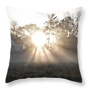 Morning Light At Valley Forge Farm Throw Pillow