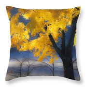 Morning Maple Throw Pillow by Rob Travis