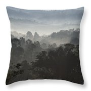 Morning Mist In Panama's Highlands Throw Pillow