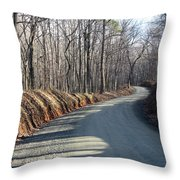 Morning Shadows On The Forest Road Throw Pillow