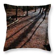 Morning Shadows Throw Pillow