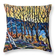 Morning Sunrise Over The Lake By Prankearts Throw Pillow