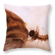 Mosquito Fish Preparing To Ingest Throw Pillow