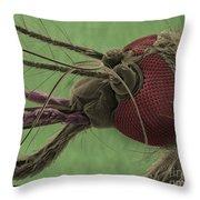 Mosquitos Head, Sem Throw Pillow