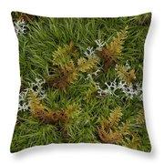 Moss And Lichen Throw Pillow
