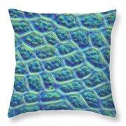 Moss Cells Throw Pillow