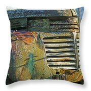 Moss Covered Grill Throw Pillow