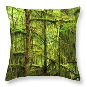 Moss-covered Trees Throw Pillow
