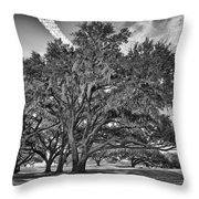 Moss-draped Live Oaks Throw Pillow