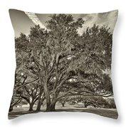 Moss-draped Live Oaks Sepia Toned Throw Pillow