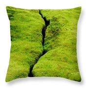 Moss Forest Throw Pillow
