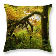 Moss In The Forest Throw Pillow