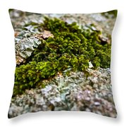 Moss In The Middle Throw Pillow