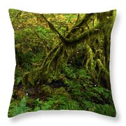 Moss In The Rainforest Throw Pillow