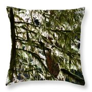 Moss On Trees Throw Pillow