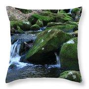 Moss Overflow Throw Pillow