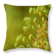 Moss With Capsules Throw Pillow