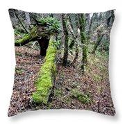 Mossey Log Throw Pillow