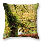 Mossy Bend Throw Pillow