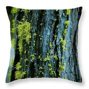 Mossy Compass Throw Pillow
