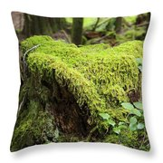 Mossy Old Stump Throw Pillow