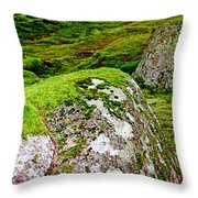 Mossy Rock Garden Throw Pillow