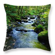 Mossy Rocks And Water   Throw Pillow