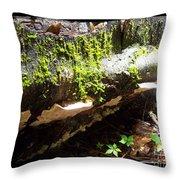 Mossy Waterfall On Mushroom Rock Throw Pillow