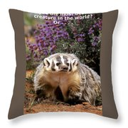 Most Beautiful? Throw Pillow