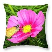 Moth On A Cosmos Throw Pillow