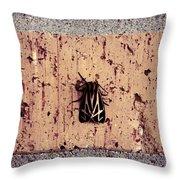 Moth On Brick Throw Pillow