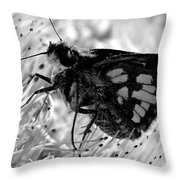 Moth One Throw Pillow