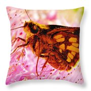Moth Two Throw Pillow