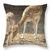 Mother And Child V2 Throw Pillow