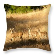 Mother And Twins Throw Pillow