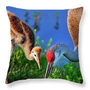 Mother And Young Sandhill Crane Throw Pillow