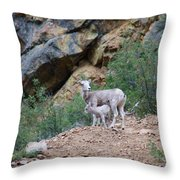 Mothers Shelter Throw Pillow