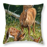 Mothers Worry Throw Pillow