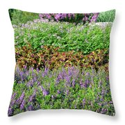 Mounds Of Color Throw Pillow