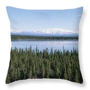 Mount Drum, Sanford And Wrangell Throw Pillow