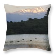 Mount Kilimanjaro Rises Above One Throw Pillow