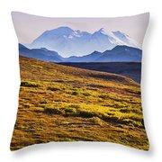 Mount Mckinley, Denali National Park Throw Pillow