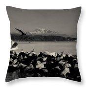 Mount Washington View From White Rock Bc Throw Pillow