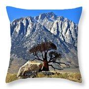 Mount Williamson Throw Pillow