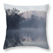 Mountain And Trees Reflected In The Water Throw Pillow