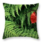 Mountain Bindweed And Fern Fronds Throw Pillow