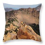 Mountain Climber Throw Pillow