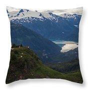 Mountain Flock Throw Pillow by Mike Reid